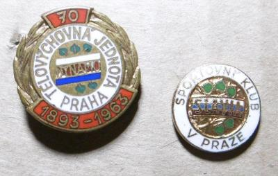 Odznaky  kopaná Dynamo  Slávia