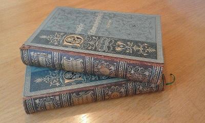 Nádherné knihy Dějiny lit - Deutsche Literaturgeschichte, Koenig 1893