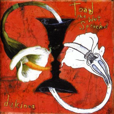 CD TOAD THE WET SPROCKET - DULCINEA
