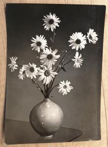 Retro pohlednice - Srdečné přání - 145 x 100 mm