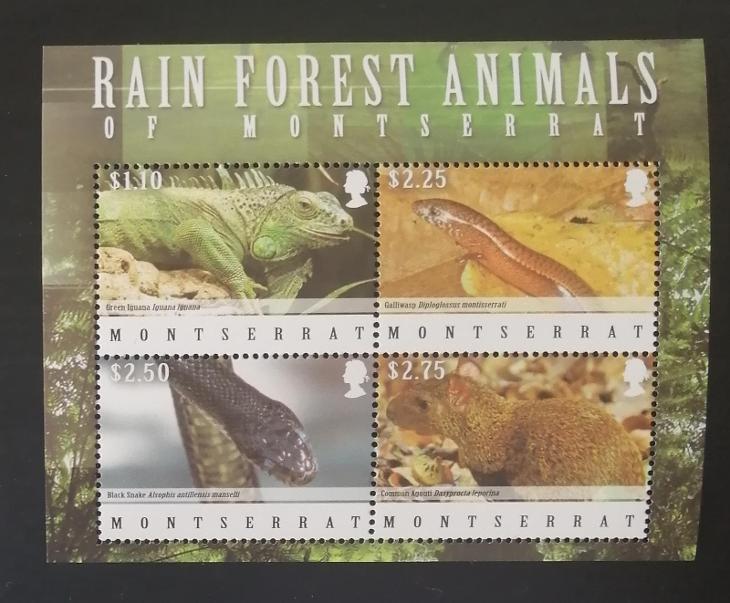 Montserrat 2009 Mi.1476-9Kb. 7€ Fauna tropů, ještěři, plazi a hadi - Filatelie