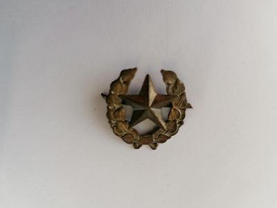 Odznak hvězda, klopa