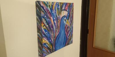 ručně malovaný obraz páv akrylem na plátno s rámem 29x29