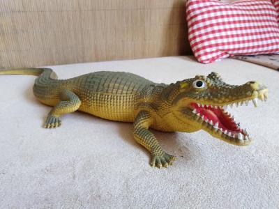 Obrovský krokodýl - 58 cm