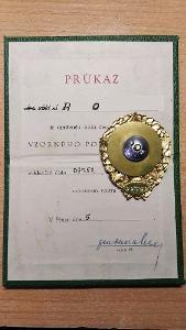 Odznaky-Vzorný pohraničník,Čes.odznak ČSM a I.CS 1955 + vojenský kufr