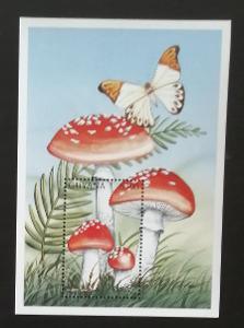 Guyana 1997 Bl.531 5€ Houby a mykologie, Amanita muscaria