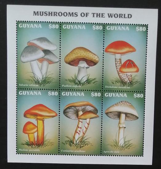 Guyana 1997 Mi.5925-0 7,5€ Houby a mykologie, flora Jižní Ameriky - Filatelie