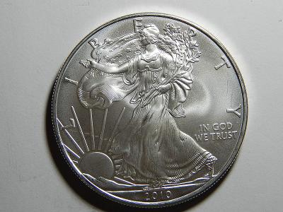 USA 1 Dollar 2010 Silver Eagle Ag 1 OZ UNC  č36280