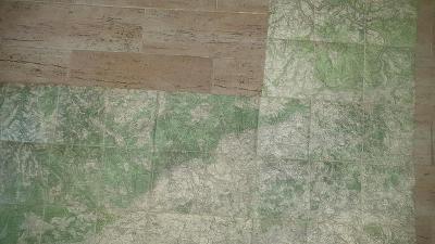 Staré vojenské mapy SUDETY-Krušné Hory-Severní Čechy-na plátně