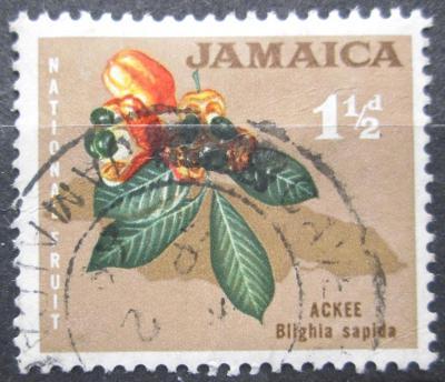 Jamajka 1964 Poddužák lahodný Mi# 220 0141