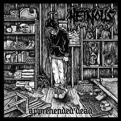 S.O.T.E. / HEINOUS split LP  MIN vinyl