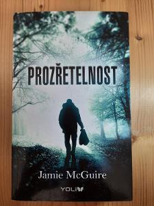 Prozřetelnost Jamie McGuire