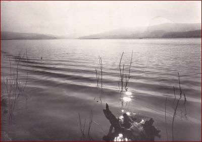 Frymburk * Lipno, jezero, partie * Český Krumlov (Šumava) * V678
