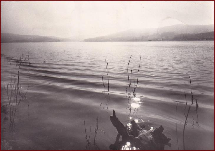 Frymburk * Lipno, jezero, partie * Český Krumlov (Šumava) * V678 - Pohlednice