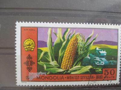 Mongolsko, kukuřice