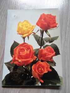 9x kartička či pohled, květiny, viz foto.