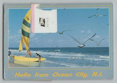 USA • OCEAN CITY • NEW JERSEY • 3_411