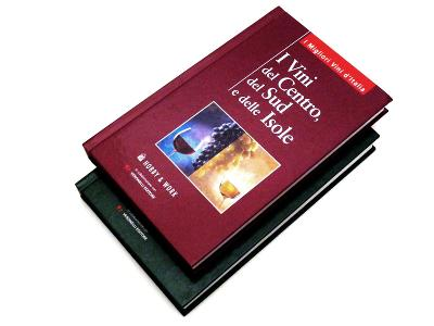 #3054A 2x kniha I migliori vini d'Italia N. Stefi 2005