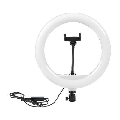 """8"""" kruhové světlo (ring light), světlo na mobil"""