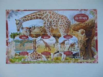 Aršík - Libreville - Gabon - Žirafy (15-9)