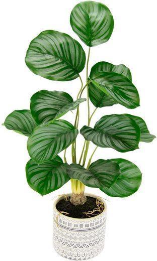 Umělá rostlina Lennja (79653030) _G615