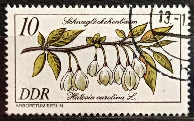 DDR: MiNr.2574 Snow Drop 10pf, Rare Wood Issue 1981