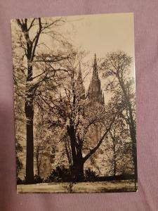 Pohlednice Praha -Královská zahrada,r.1962,prošlé poštou