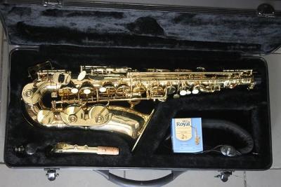 zánovní altový saxofon ROY BENSON AS 101 - plně hrající