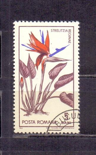 Rumunsko - Mich. č. 2442