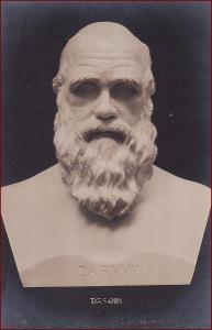 Socha (umělecká plastika) * Darwin, busta, osobnost, historie * X082