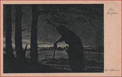 Žena * stařena, čarodějnice, večerní krajina, umělecká * X238