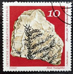DDR: MiNr.1822 Lebachia Speciosa 10pf, Fossils 1973