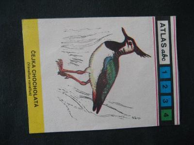 Papírová kartička Naši bahňáci s popisem