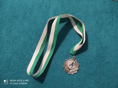 MiniHokej medaile