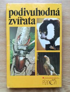 Kniha  Podivuhodná zvířata