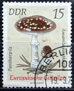 DDR: MiNr.1935 Amanita Pantherina 15pf, Poisonous Mushrooms 1974