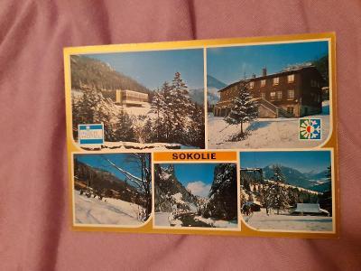 Pohlednice SOKOLIE,neprošlé poštou