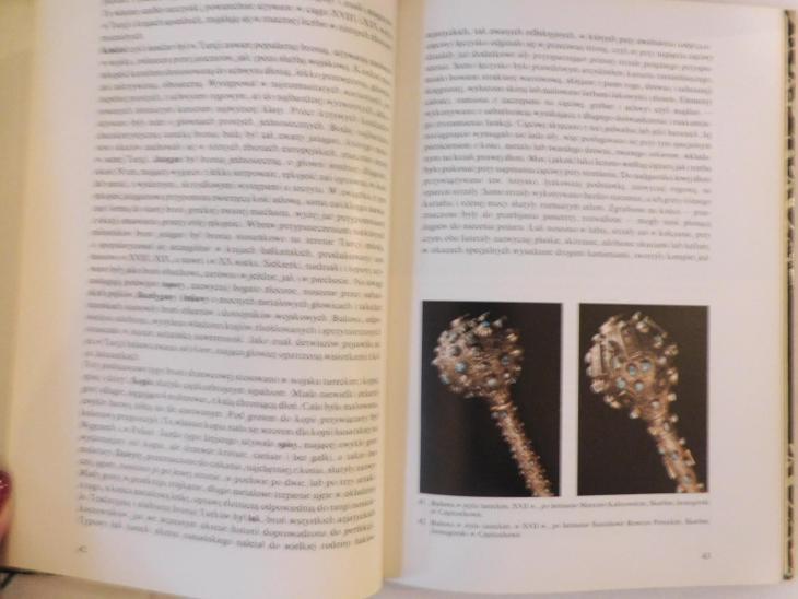 Kniha o zbraních východu - polská - Vojenské