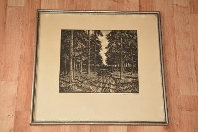 obraz, autoská litografie, signováno