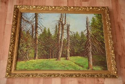 obraz, olej,  Boubínský les z roku 1979
