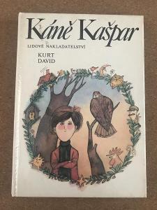 Káně Kašpar - David Kurt