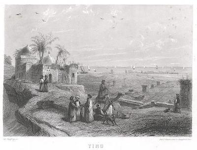 Tiro Guinea, oceloryt 1860