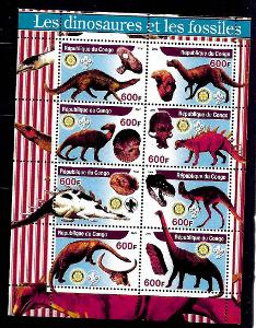 Kongo 2004 - dinosauři a fosílie II.