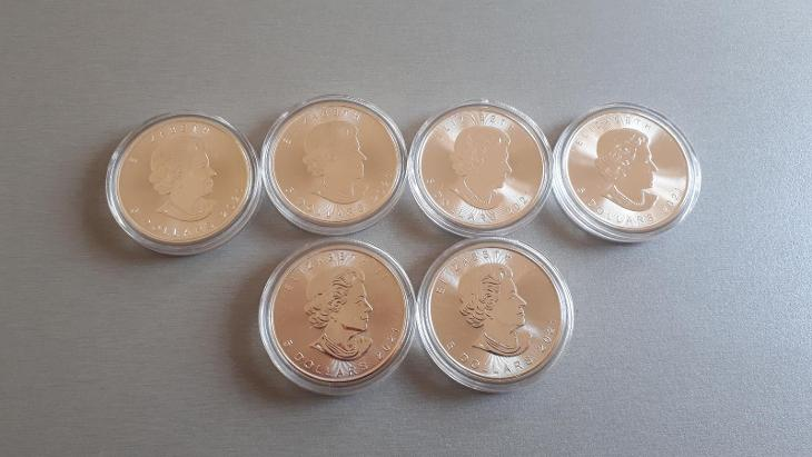 Stříbrné investiční mince Maple Leaf 1oz - Numismatika