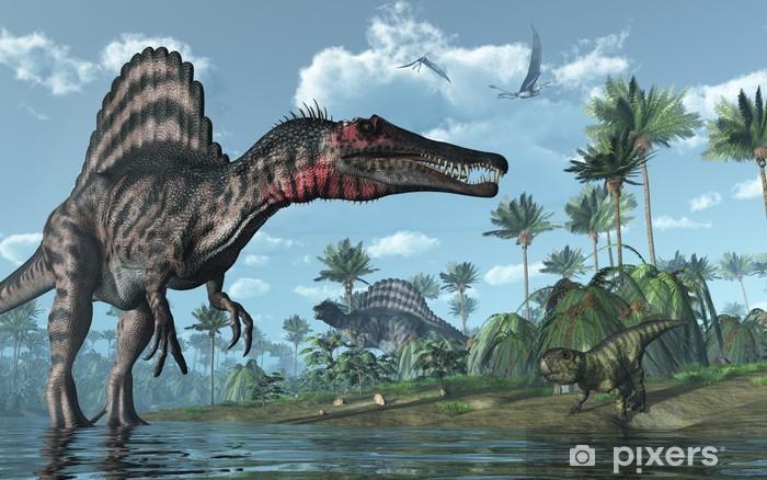 Dinosauří kost 8 - Minerály a zkameněliny