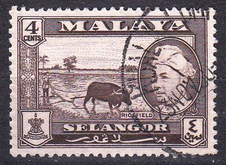 Malaya Selangor, ražená, od 1kč - Filatelie
