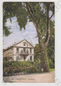 Plzeň (Pilsen), Lochotín, kolorovaná, cca 1915