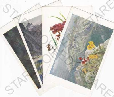 Tatranská květena, 9ks.pohlednic -(chybí č.3), kre