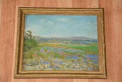 obrázek, obraz, olej, krajinka sign 1922