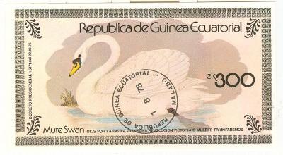 Afrika, Republica de Guinea Ecuatorial, labuť